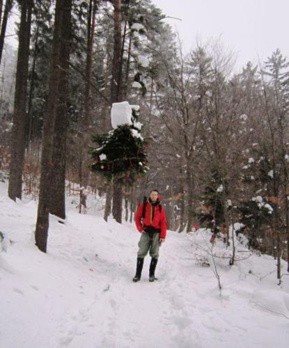 015. Vánoční stromek